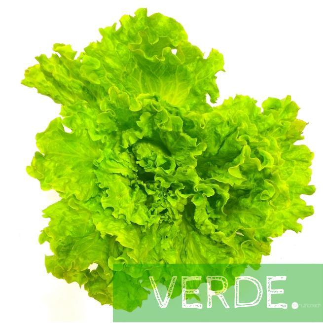 nutri-coach-health-helen-clorofila-ensalada-verde