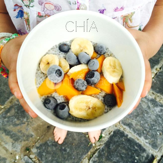 h2-nutricoach-chia-coco-pudin