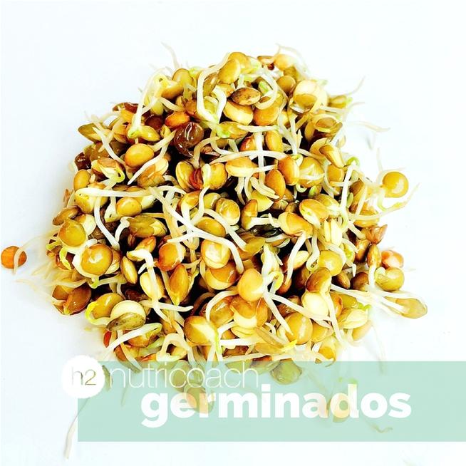 h2nutricoach-helen-medal-germinados-brotes-como-se hacen-beneficios